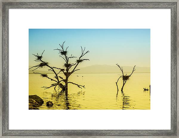 The Ancient Sea Framed Print