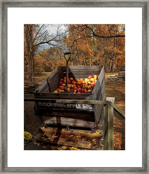 The Apple Bin Framed Print