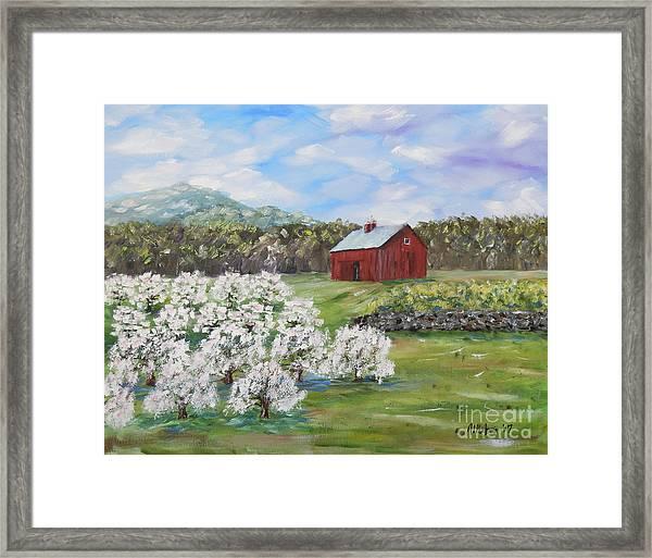 The Apple Farm Framed Print