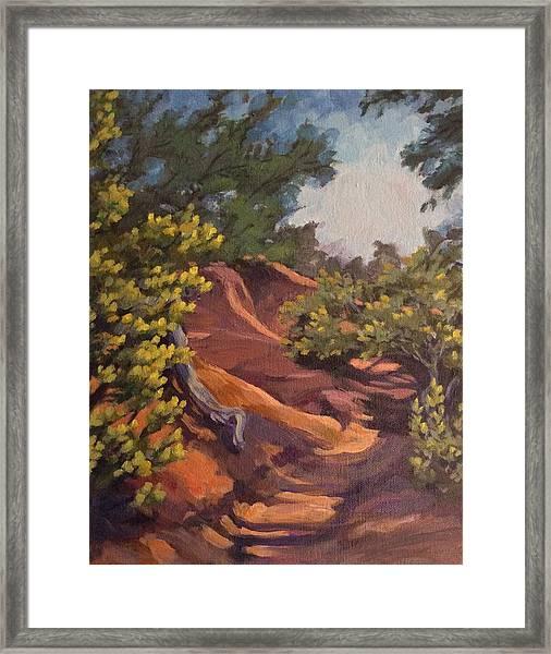 The Arroyo Framed Print