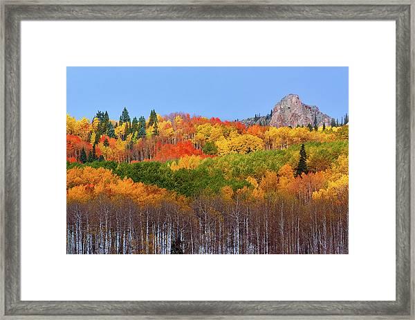 The Autumn Blanket Framed Print