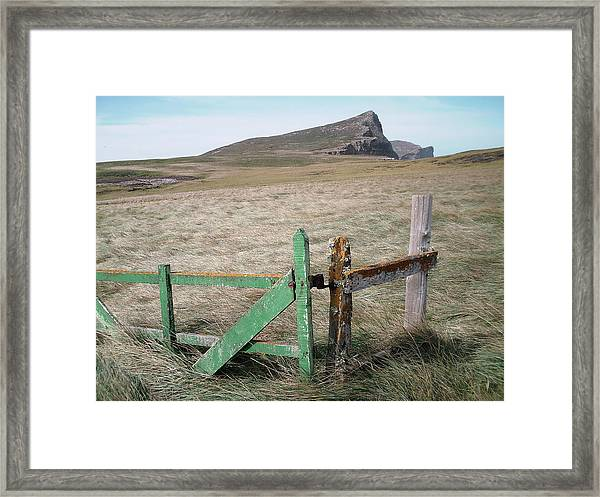 The Back 1000 Framed Print