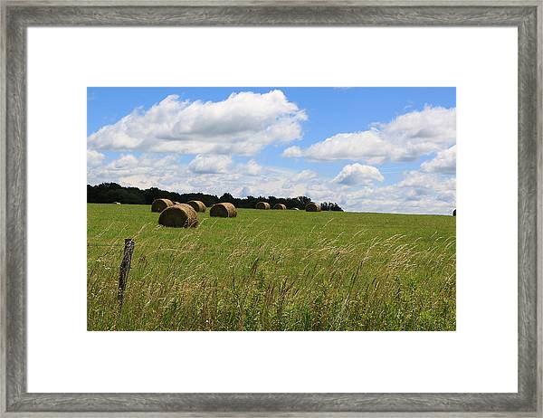The Bales Of Summer 2 Framed Print