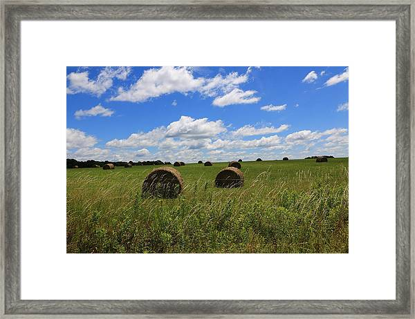The Bales Of Summer Framed Print