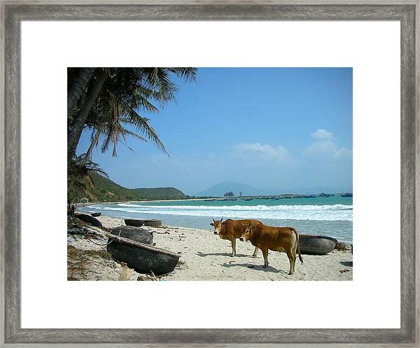 The Beachwalk Framed Print
