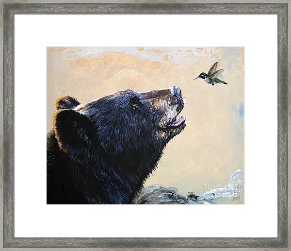 The Bear And The Hummingbird Framed Print