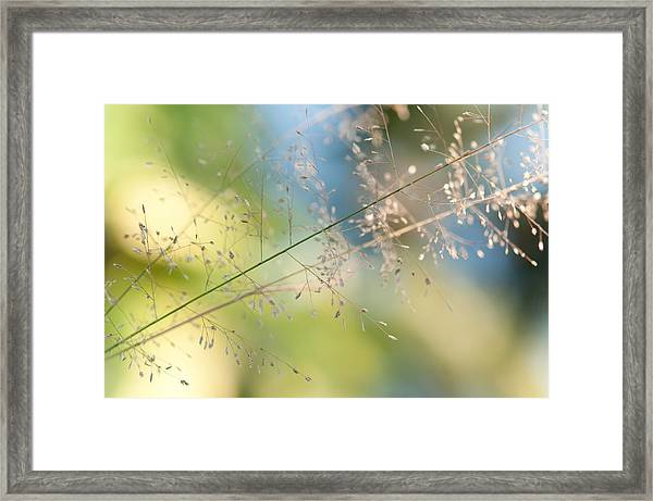 The Beauty Of The Earth. Natural Watercolor Framed Print
