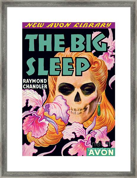 The Big Sleep Framed Print