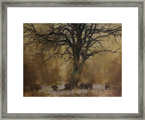 The Big Tree With Wild Boars Framed Print