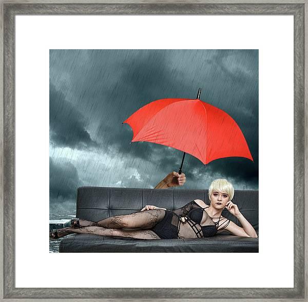 The Black Widow Framed Print