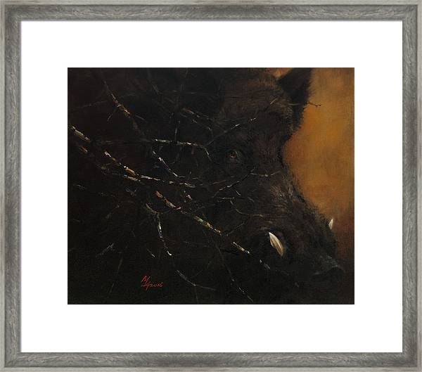 The Black Wildboar Framed Print