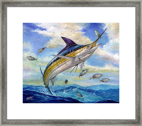The Blue Marlin Leaping To Eat Framed Print