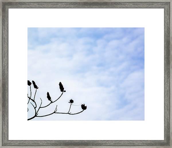 The Blue Yonder Framed Print