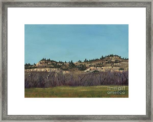The Bluffs Framed Print