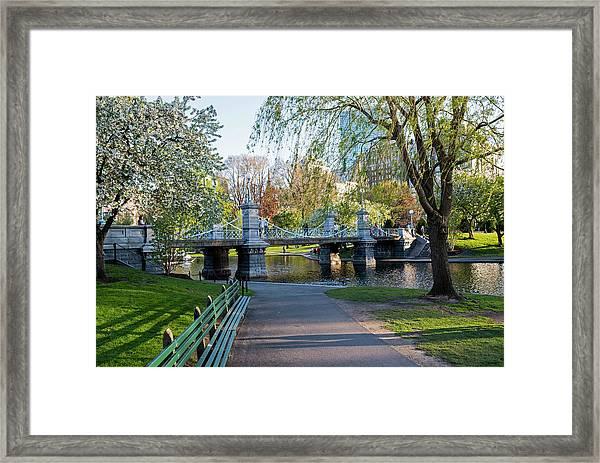The Boston Public Garden In The Spring Boston Ma Framed Print