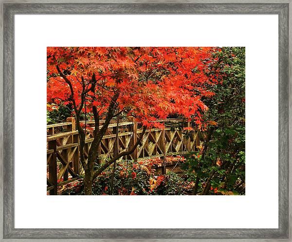 The Bridge In The Park Framed Print