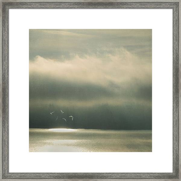 The Bright Spot Framed Print