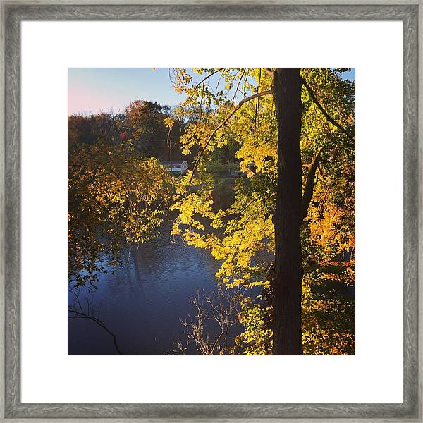 The Brilliance Of Nature Leaves Me Speechless Framed Print