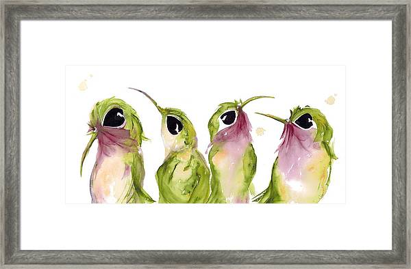 The Broad-tails Framed Print