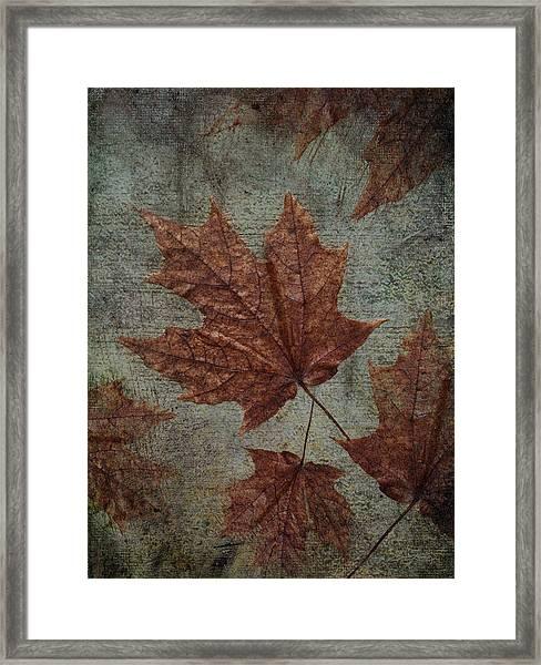 The Bronzing Framed Print