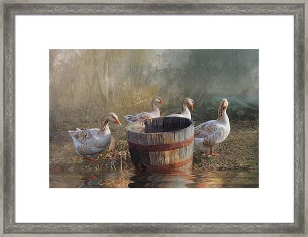 The Bucket Brigade Framed Print