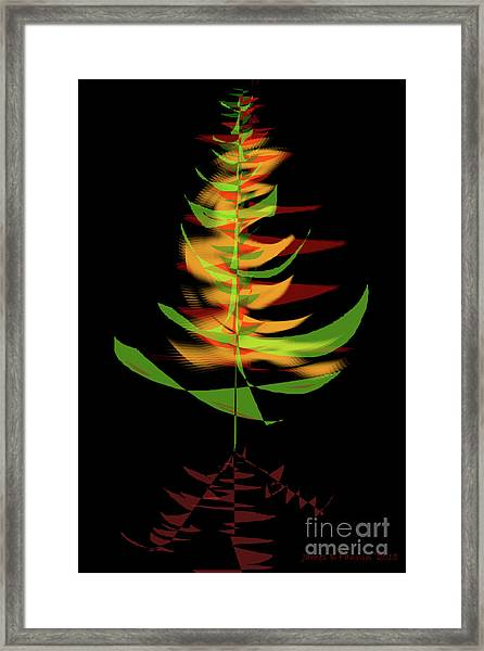 The Burning Bush Framed Print