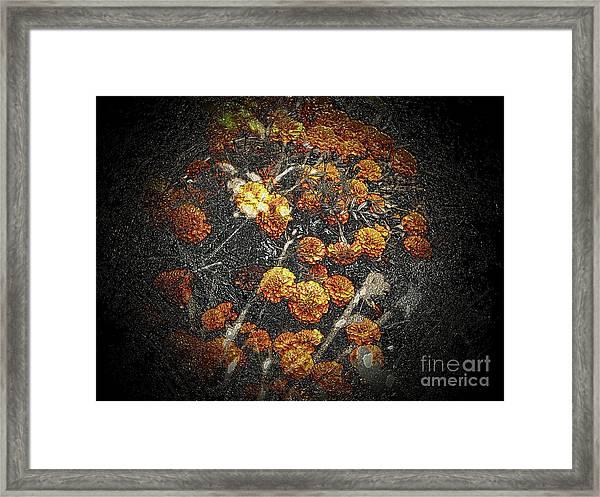 The Carved Bush Framed Print
