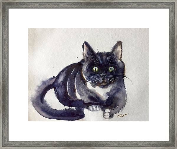 Framed Print featuring the painting The Cat 8 by Katerina Kovatcheva