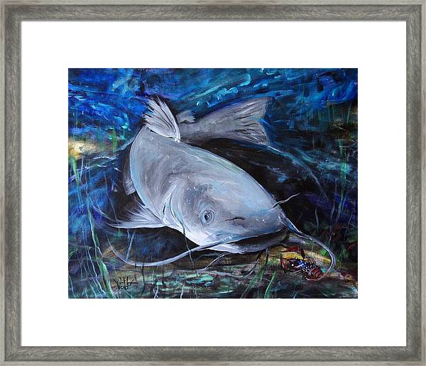 The Catfish And The Crawdad Framed Print