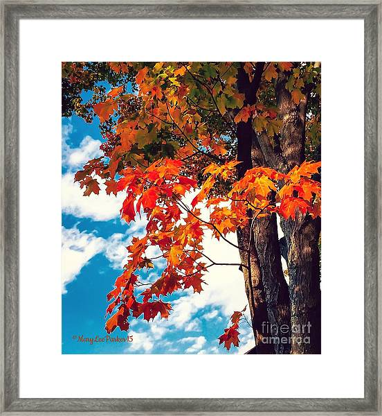 The  Changing  Framed Print