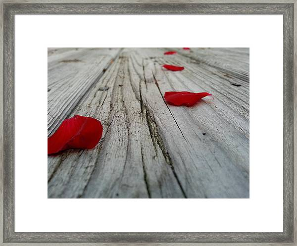The Character Of Beauty Framed Print