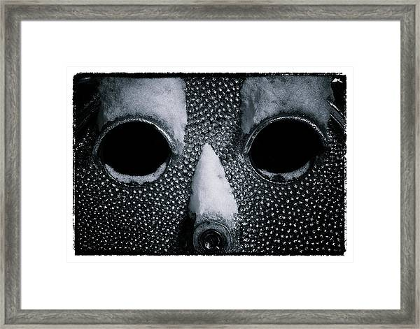 The Cold Stare Framed Print