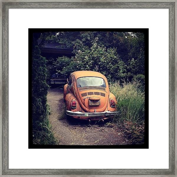 The Color Of Eugene Framed Print
