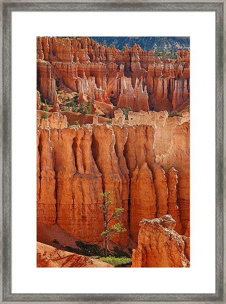The Colors Of Bryce Canyon Framed Print