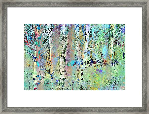The Colouring Book In The Forest Framed Print
