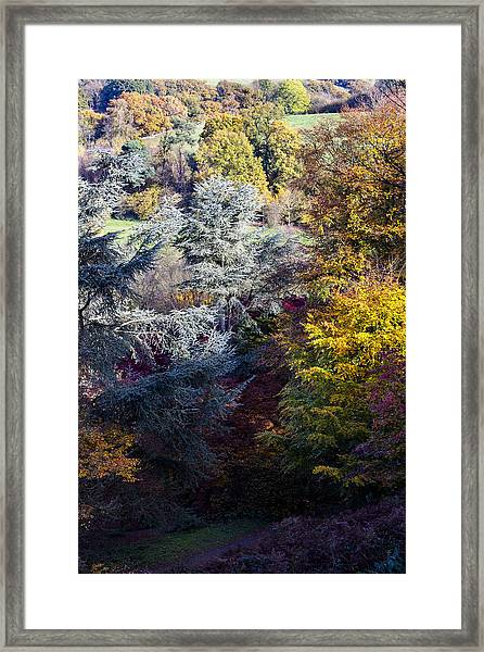 The Colours Of Autumn Framed Print