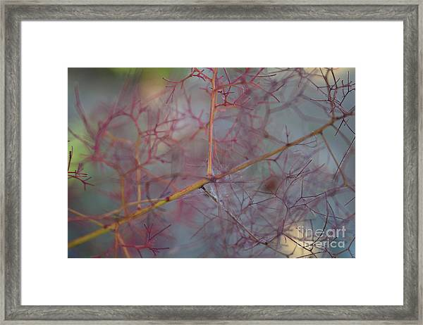 The Confusion Framed Print