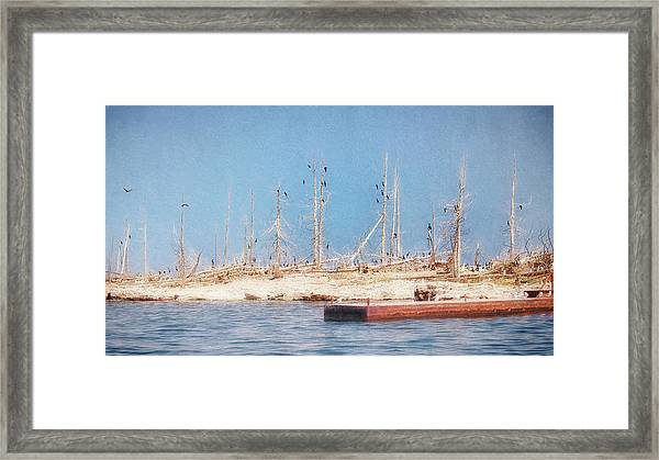 The Cormorants At Deaths Door Framed Print