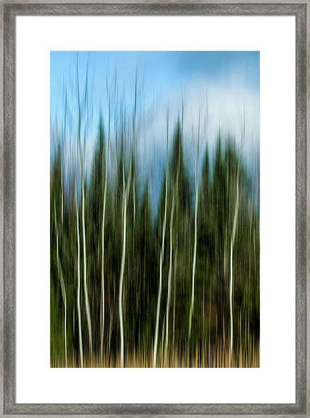 The Counsel Of Trees Framed Print