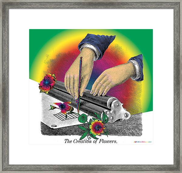The Creation Of Flowers Framed Print