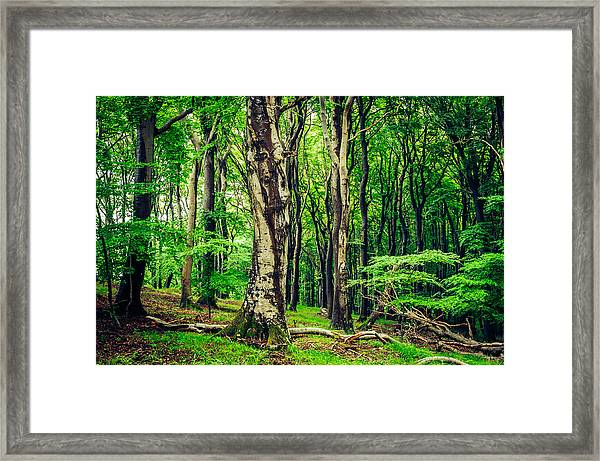 The Crowds Framed Print