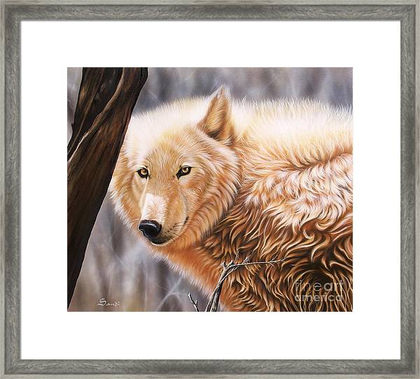 The Daystar II Framed Print