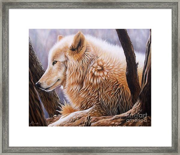 The Daystar Framed Print