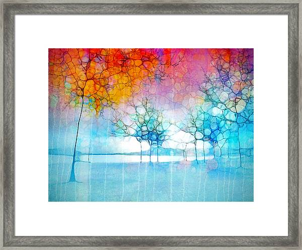 The Departing Trees Framed Print
