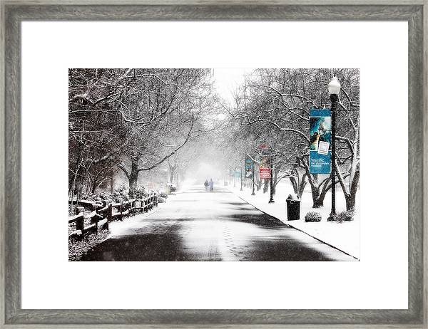 The Detroit Zoo Framed Print