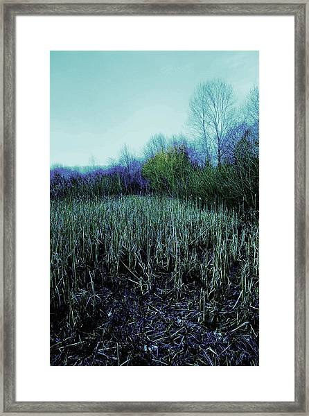 The Diary Framed Print by Dean Edwards