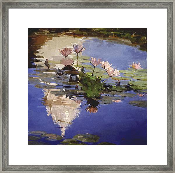 The Dome - Water Lilies Framed Print