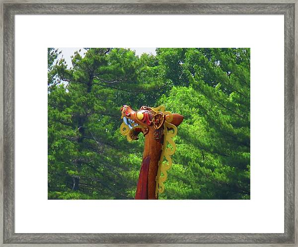 The Draken's Head Framed Print