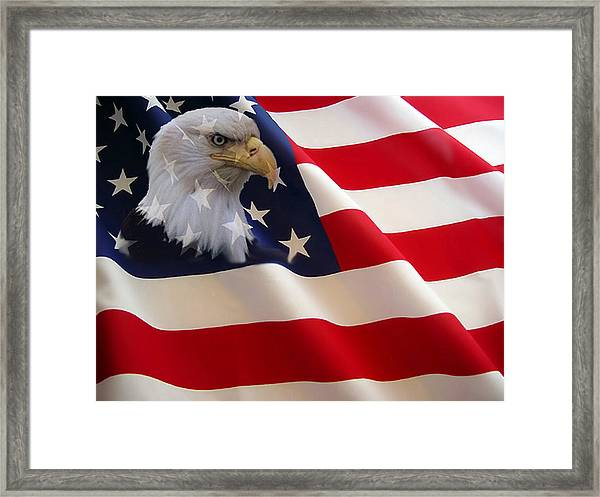 The Eagle Flag Framed Print by Evelyn Patrick