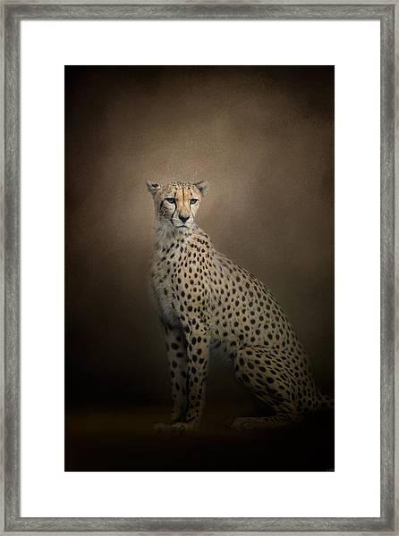 The Elegant Cheetah Framed Print
